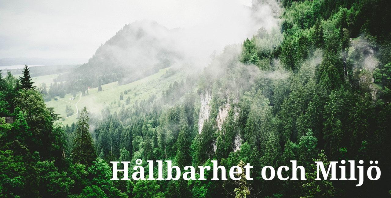 Hållbarhet och Miljö